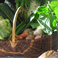 Vegetable basket filled with a variety of vegetables