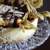 Chocolate dipped physalis cheesecake